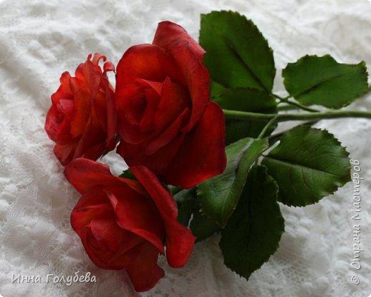 Это нежное пламя страсти В сердце женщины ярко горит И согреет во время ненастья И дорогу во тьме осветит!    Вот такие розы были слеплены за два дня.Срочный заказ стимулировал на мой личный маленький рекорд))) Розы получились большие,в диаметре - 12см.Они трех-цветные,на некоторых фото это можно увидеть,хотя красный очень тяжело передается камерой))).Внутри они желто-оранжевые,по краю- красные и темно-красные. Красила не маслом и не пастелью,а разведенными в воде пищевыми красителями.Это позволило добиться плавных переходов цвета.Может этот опыт кому-то пригодится. Девочки,а завтра увидимся с поздравлениями))) фото 4