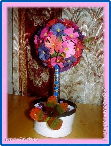 Топиарий с маленькими цветами. фото 1