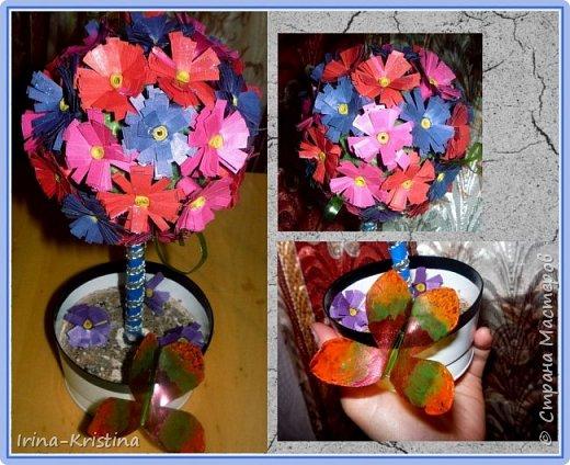 Топиарий с маленькими цветами. фото 2