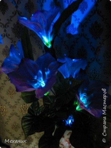 Искусственные  с подсветкой фото 2