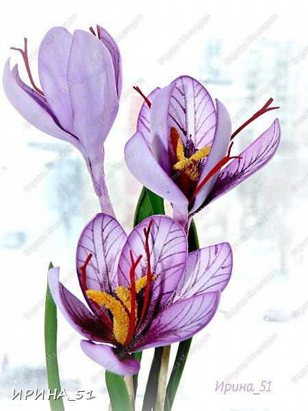 Здравствуйте! Как всегда я с цветами. ))))))   На душу уже весна, и в преддверии международного женского дня спешу поздравить всех милых дам с праздником!  Желаю Вам здоровья, счастья, удачи, творческого вдохновения, душевного тепла и доброты! Пусть у Вас всегда будет хорошее настроение! Мира и добра в вашим семьям!  А теперь приглашаю Вас к просмотру.  Первым покрасуется венок с ранункулюсами из корейского фоамирана. фото 10