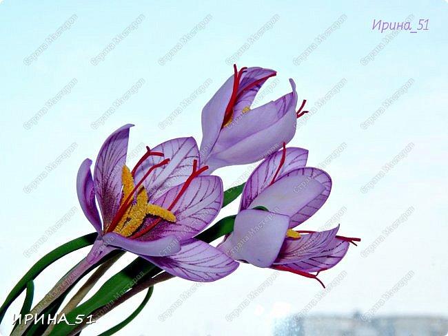 Здравствуйте! Как всегда я с цветами. ))))))   На душу уже весна, и в преддверии международного женского дня спешу поздравить всех милых дам с праздником!  Желаю Вам здоровья, счастья, удачи, творческого вдохновения, душевного тепла и доброты! Пусть у Вас всегда будет хорошее настроение! Мира и добра в вашим семьям!  А теперь приглашаю Вас к просмотру.  Первым покрасуется венок с ранункулюсами из корейского фоамирана. фото 9