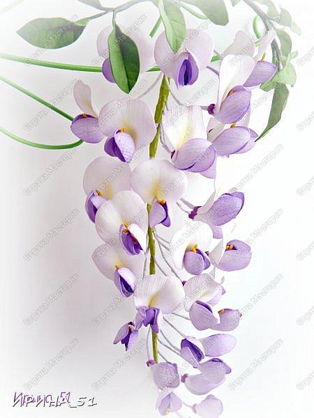 Здравствуйте! Как всегда я с цветами. ))))))   На душу уже весна, и в преддверии международного женского дня спешу поздравить всех милых дам с праздником!  Желаю Вам здоровья, счастья, удачи, творческого вдохновения, душевного тепла и доброты! Пусть у Вас всегда будет хорошее настроение! Мира и добра в вашим семьям!  А теперь приглашаю Вас к просмотру.  Первым покрасуется венок с ранункулюсами из корейского фоамирана. фото 8