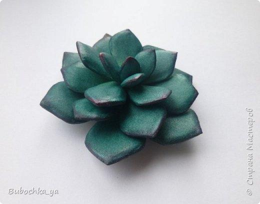 Каменная роза из иранского фома. фото 1