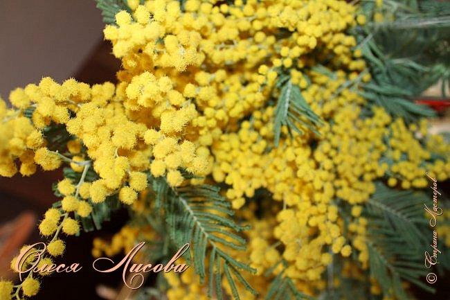 Всех рада видеть в этот весенний день!  Дорогие девочки!  Всех ВАС, от чистого сердца хочу поздравить с одним, из самых прекрасных праздников - 8 МАРТА!  Пусть цветы всегда цветут в Вашей душе, птицы поют и щебечут слова о любви, настроение будет долгим и праздничным, любимые будут рядом и всегда будет крепкое здоровье!!!!  фото 18