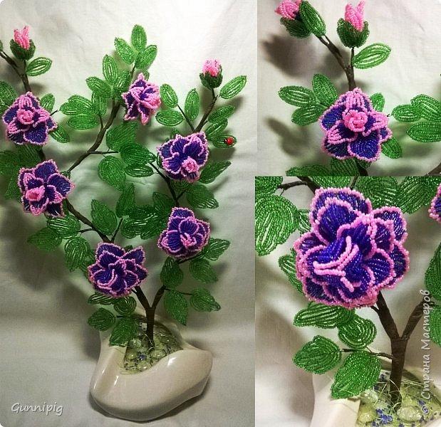 Фиолетовые розочки. Навояла в подарок) фото 1
