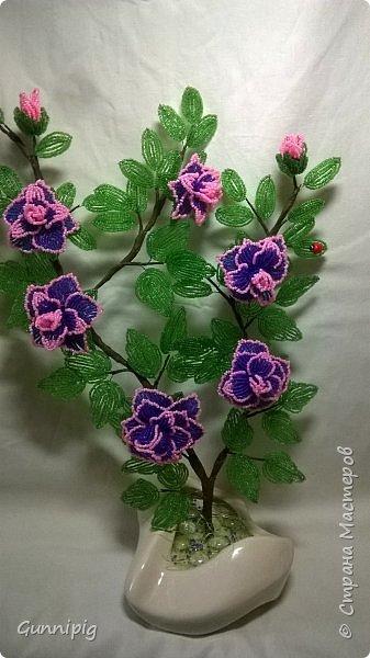 Фиолетовые розочки. Навояла в подарок) фото 2