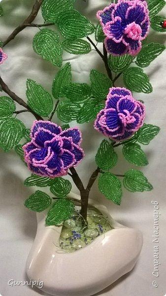 Фиолетовые розочки. Навояла в подарок) фото 3