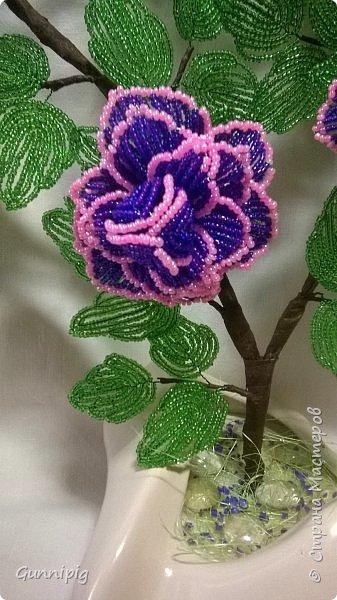 Фиолетовые розочки. Навояла в подарок) фото 4