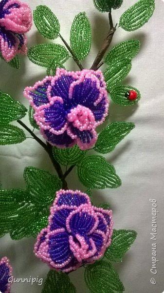 Фиолетовые розочки. Навояла в подарок) фото 5