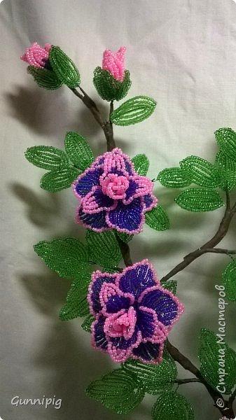 Фиолетовые розочки. Навояла в подарок) фото 6