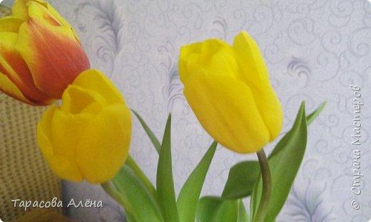 Здравствуйте, самые нежные, самые красивые, самые милые, самые очаровательные, самые - самые лучшие девочки, девушки, женщины мамы и будущие мамы, этот проект посвящается именно вам, ведь сегодня ваш день!!!! 8 марта - день весны, когда солнышко улыбается вам, распускаются самые нежные, первые цветы и счастье заполняет всю вашу внутреннюю пустоту!! С самым нежным женским днём!!! С праздником весны!!  фото 12
