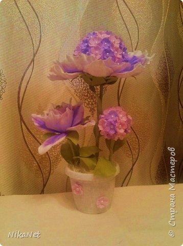 Нежный фиолет. фото 1