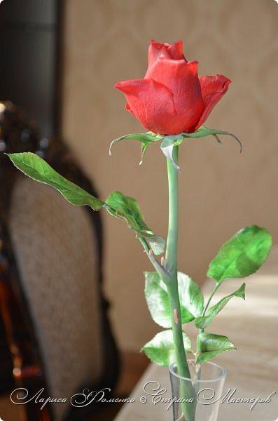 Благодаря Инне Голубевой, которая открыла , что с помощью пищевого красителя, можно добиться такого цвета, и с большой благодарностью, к одному хорошему человеку, который мне его подарил, родились эти розы!!! Спасибо девочки!!! Сразу отмечу, краситель использовался порошковый пищевой, который хранился еще с 90-х годов. фото 9
