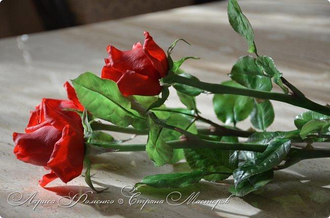 Благодаря Инне Голубевой, которая открыла , что с помощью пищевого красителя, можно добиться такого цвета, и с большой благодарностью, к одному хорошему человеку, который мне его подарил, родились эти розы!!! Спасибо девочки!!! Сразу отмечу, краситель использовался порошковый пищевой, который хранился еще с 90-х годов. фото 3