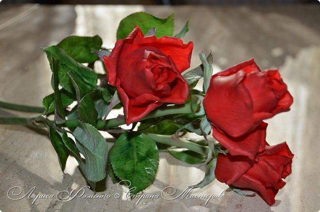 Благодаря Инне Голубевой, которая открыла , что с помощью пищевого красителя, можно добиться такого цвета, и с большой благодарностью, к одному хорошему человеку, который мне его подарил, родились эти розы!!! Спасибо девочки!!! Сразу отмечу, краситель использовался порошковый пищевой, который хранился еще с 90-х годов. фото 2