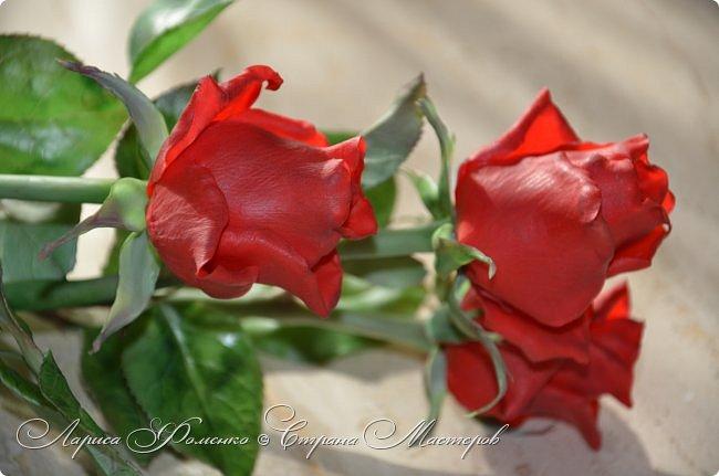 Благодаря Инне Голубевой, которая открыла , что с помощью пищевого красителя, можно добиться такого цвета, и с большой благодарностью, к одному хорошему человеку, который мне его подарил, родились эти розы!!! Спасибо девочки!!! Сразу отмечу, краситель использовался порошковый пищевой, который хранился еще с 90-х годов. фото 7