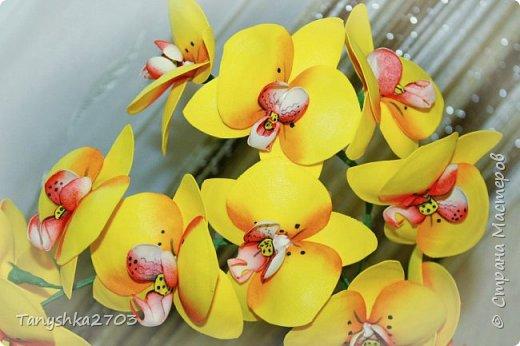 Желтая орхидея фото 3