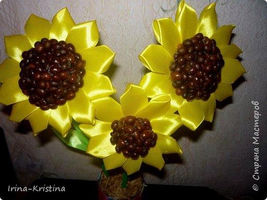 Топиарий с маленькими цветами. фото 11