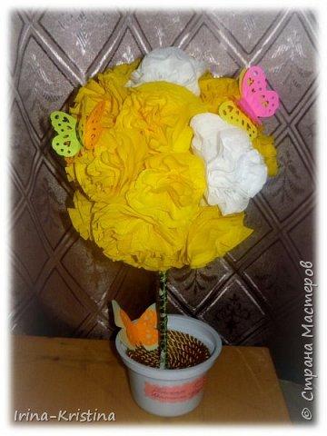 Топиарий с маленькими цветами. фото 13