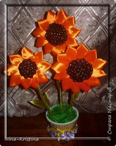 Топиарий с маленькими цветами. фото 12
