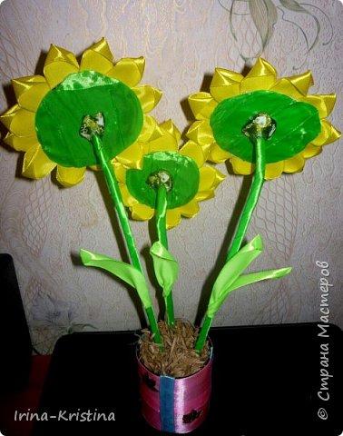 Топиарий с маленькими цветами. фото 10