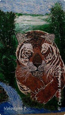 Бросок Тигра.