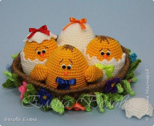 Семейство Куриных (крючок) фото 6