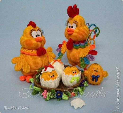 Семейство Куриных (крючок) фото 2