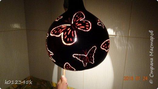 Лампы из бутылочной тыквы. кому интересно больше информации в блоге. фото 23