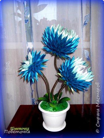 Доброго всем денечка ! Вот и я выставляю свои восьмерки , которые делала по МК Мокси Оксаны .http://stranamasterov.ru/node/733385?c=favorite фото 9
