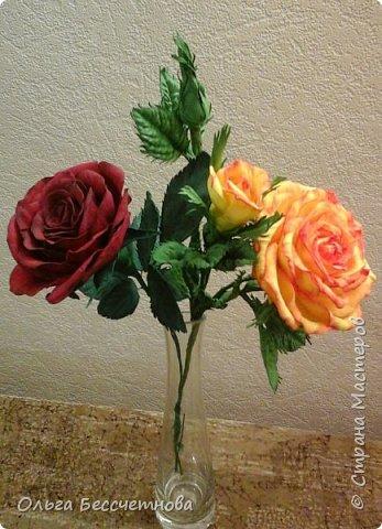 Полевые цветы и не только фото 9