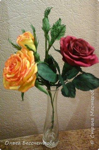 Полевые цветы и не только фото 8