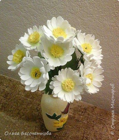 Полевые цветы и не только фото 6