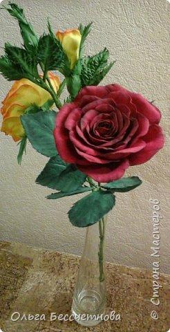 Полевые цветы и не только фото 7