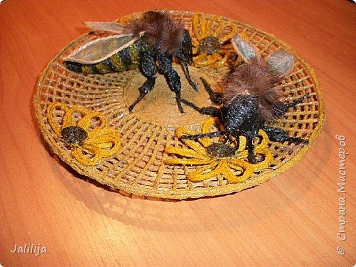 Уважаемые жители и гости Страны мастеров! Вот ещё одна тарелка панно из джутовой верёвки. Мне как раз не хватало одной для стены, которую я начала оформлять. фото 8