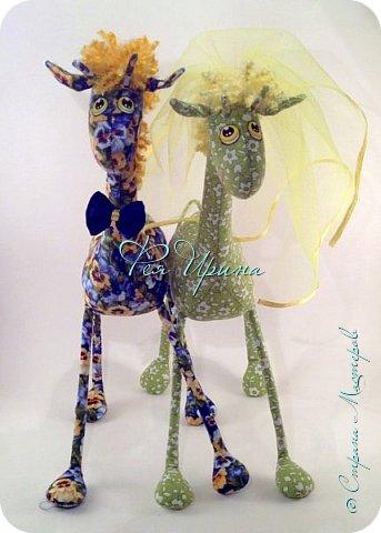 Давненько меня не было :))) Я трудилась непрерывно , покажу  всё что натворила  за  это время , начну с жирафов и лошадок :) фото 15