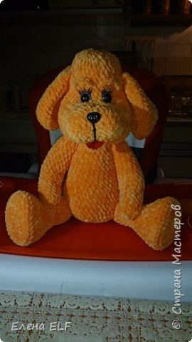 Рыженькая собачка Лизонька фото 2