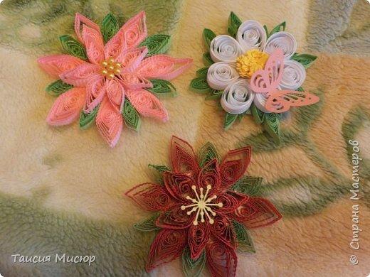 Цветы-магниты фото 3