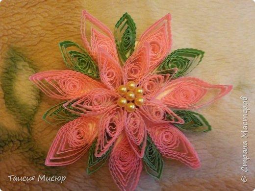 Цветы-магниты фото 2