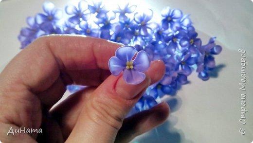 """Добрый день! Хочу поделиться своим прорывом в лепке или как говорится """"я сделала это""""! Хочу сказать спасибо Инне Голубевой http://stranamasterov.ru/user/373451 за свое вдохновение на сирень! фото 5"""