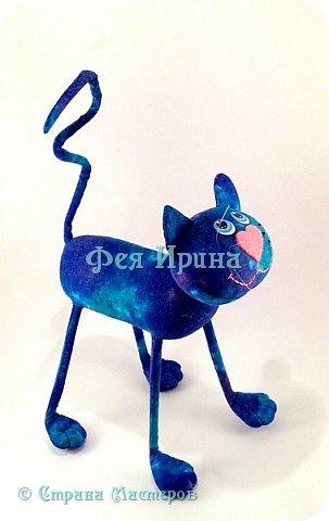 Коты и  таксы :))) фото 21