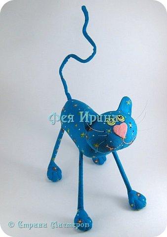 Коты и  таксы :))) фото 11