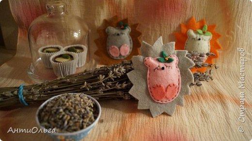 Увидела я как-то австалийского лавандового мишку. Ну так там расписано про него замечательно, что очень мне тоже захотелось что-нибудь ароматное и успокаивающее.  Эти ёжики наполнены семенами лаванды, подойдут и как сувенир и как ароматизатор в машину.  Если запах становится менее заметным - достаточно потереть ёжику пузико. )))  фото 2