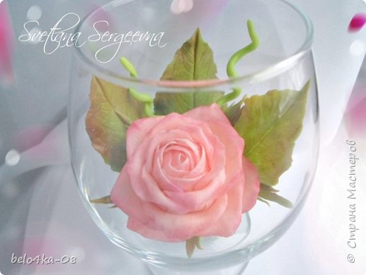 роза в стекле фото 7