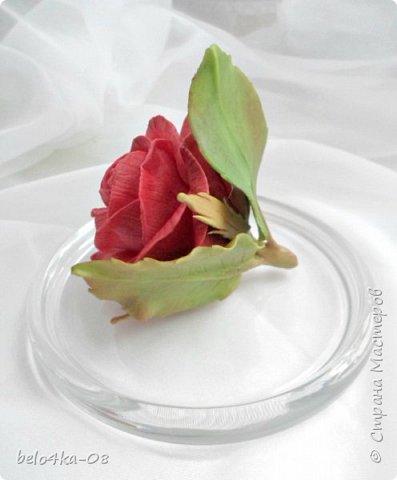 роза в стекле фото 4