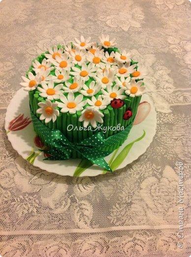 Тортик Китти на день рождения.  Покрытие торта и фигурка из сахарной мастики. фото 6