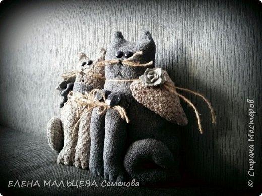 Увидела котов у Елены Пилар  ,http://stranamasterov.ru/user/29512 не смогла пройти мимо.захотелось себе что то похожее сотворить. фото 3