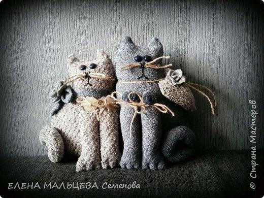 Увидела котов у Елены Пилар  ,http://stranamasterov.ru/user/29512 не смогла пройти мимо.захотелось себе что то похожее сотворить. фото 1