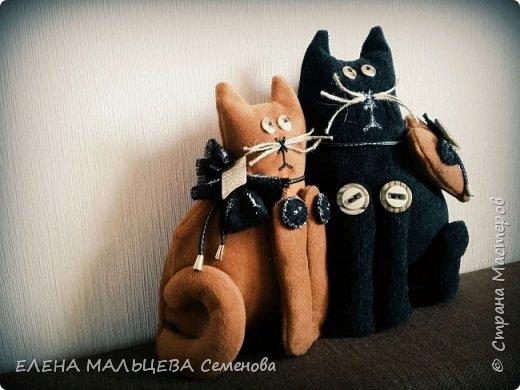 Увидела котов у Елены Пилар  ,http://stranamasterov.ru/user/29512 не смогла пройти мимо.захотелось себе что то похожее сотворить. фото 4